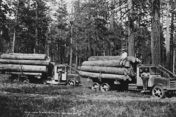logging trucks from mid 1900's